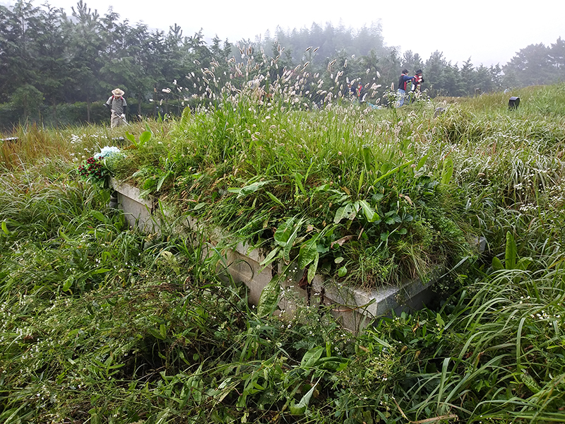 성당묘지벌초 20200919 (1).jpg